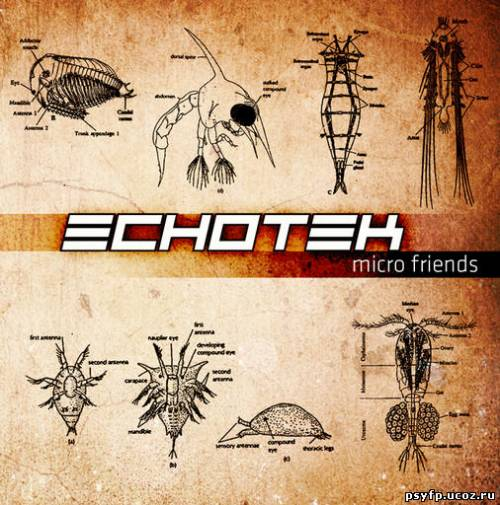Echotek - Micro Friends {2010}