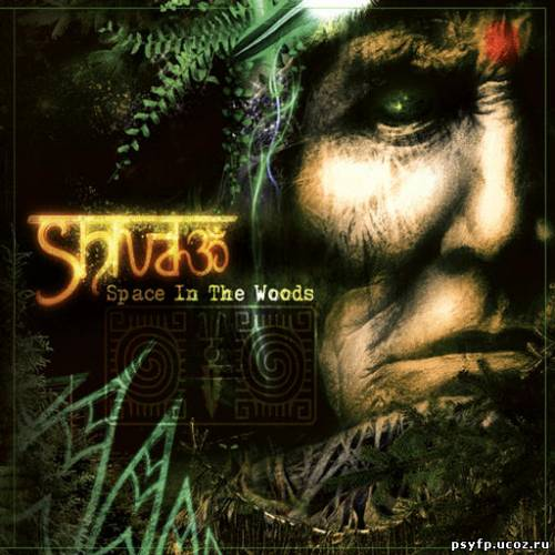 Shiva3 - Space In The Wood (2010)